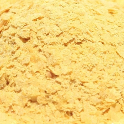 Nutritional Yeast 1